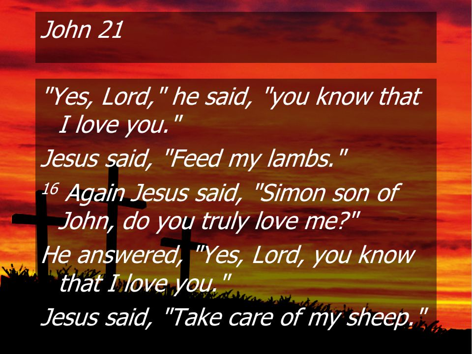 John 21 Yes, Lord, he said, you know that I love you. Jesus said, Feed my lambs. 16 Again Jesus said, Simon son of John, do you truly love me He answered, Yes, Lord, you know that I love you. Jesus said, Take care of my sheep.