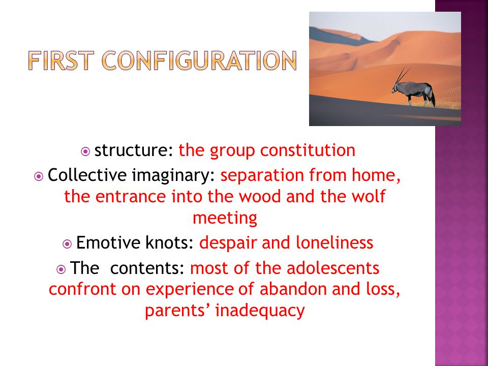  structure: the group constitution  Collective imaginary: separation from home, the entrance into the wood and the wolf meeting  Emotive knots: despair and loneliness  The contents: most of the adolescents confront on experience of abandon and loss, parents' inadequacy