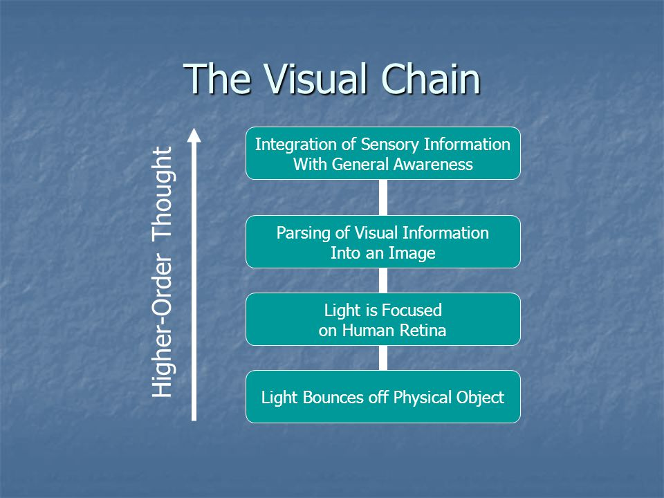 The Visual Chain Integration of Sensory Information With General Awareness Parsing of Visual Information Into an Image Light is Focused on Human Retina Light Bounces off Physical Object Higher-Order Thought
