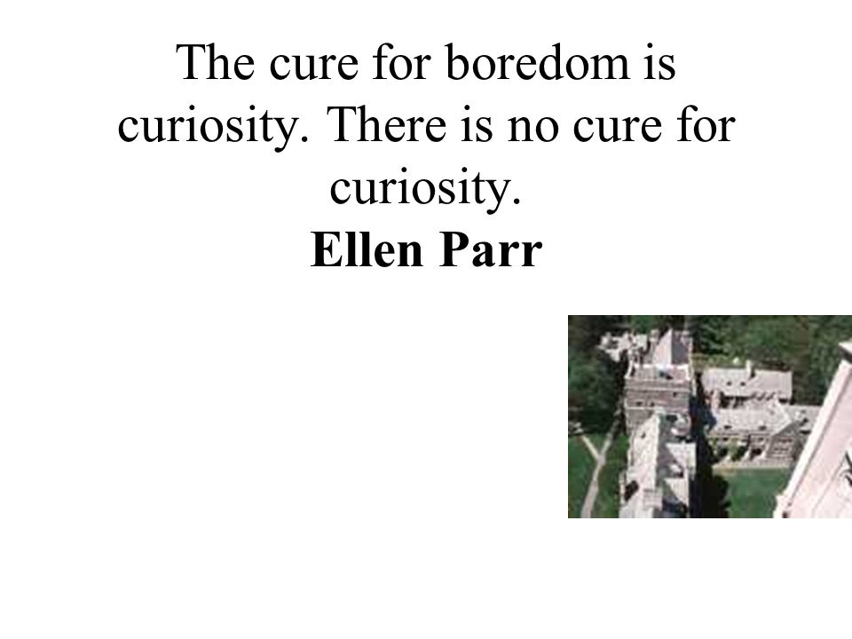 The cure for boredom is curiosity. There is no cure for curiosity. Ellen Parr