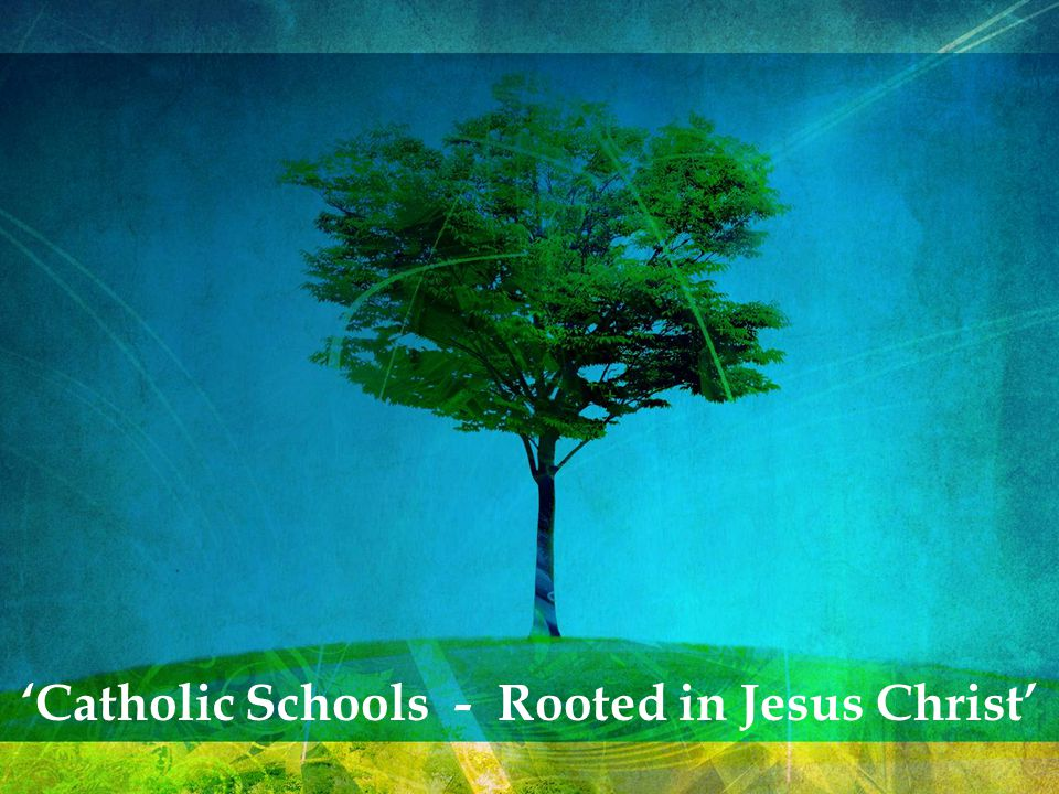 The theme for Catholic Schools Week 2011 is: 'Catholic Schools – Rooted in Jesus Christ' The theme is inspired by the Pastoral Letter of the Holy Father Pope Benedict XVI to the Catholics of Ireland.