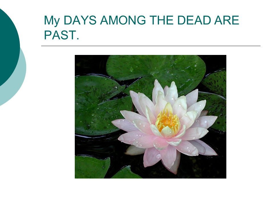 poem My days among the Dead are past; Around me I behold Where re these casual eyes are cast, The mighty minds of old; My never failings friends are they; With whom I converse day by day.