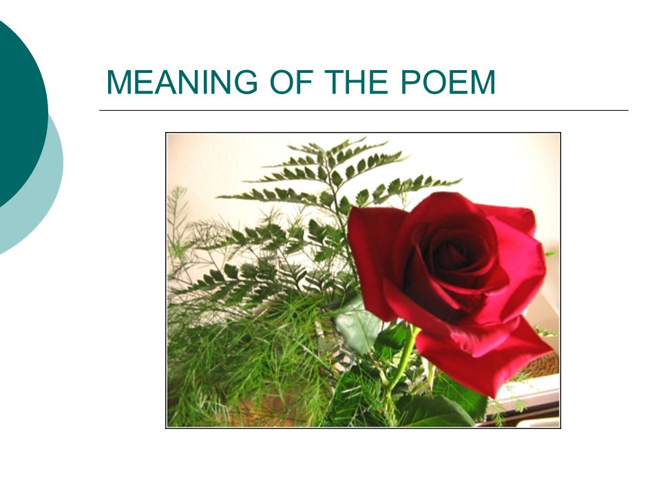 MEANING OF THE POEM