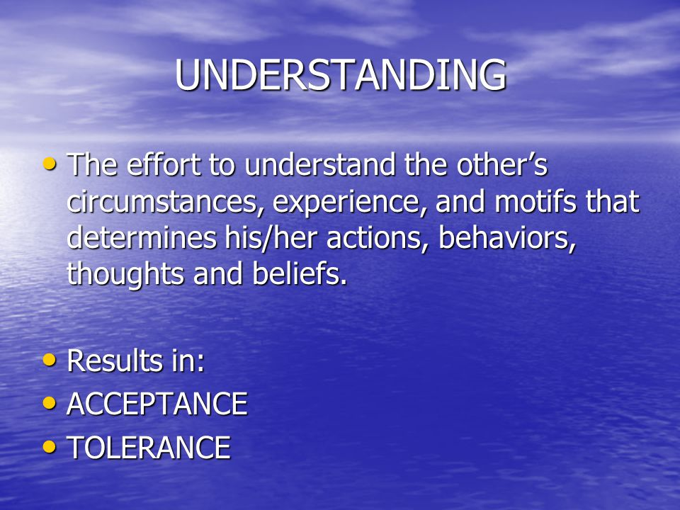 UNDERSTANDING The effort to understand the other's circumstances, experience, and motifs that determines his/her actions, behaviors, thoughts and beliefs.
