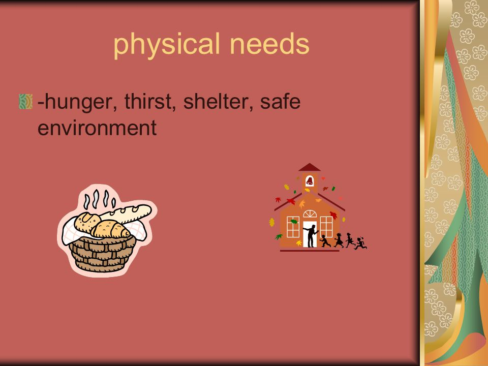 physical needs -hunger, thirst, shelter, safe environment
