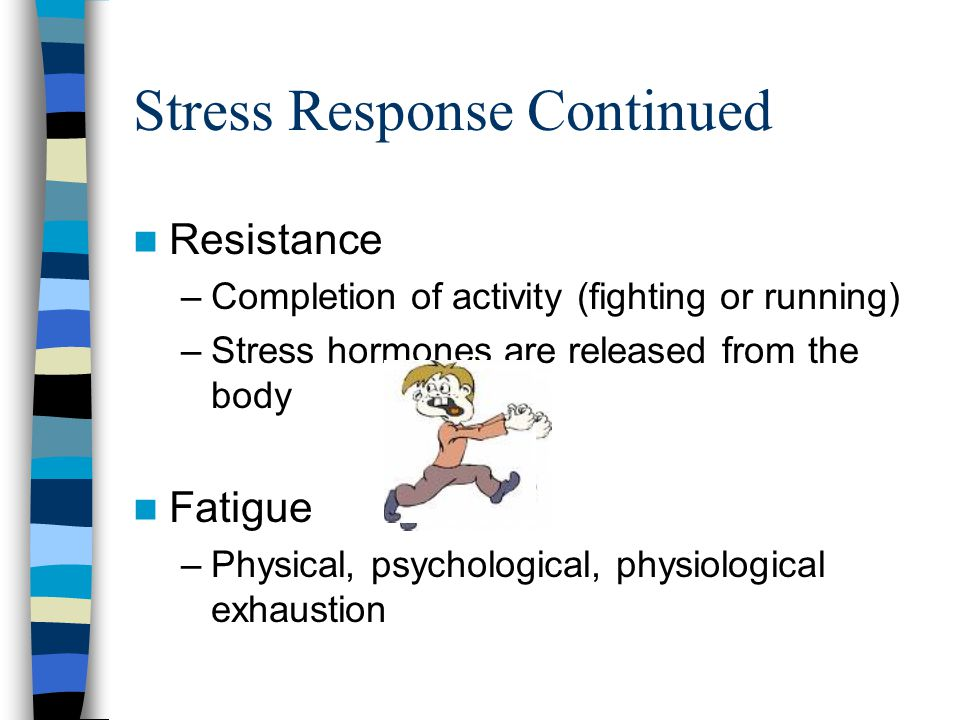 Stress response Alarm - fight or flight - provoked by the nervous and endocrine systems –Eye sight improves –Hearing improves –Release of Adrenaline –Heart rate increases –Breathing gets shallow and quick