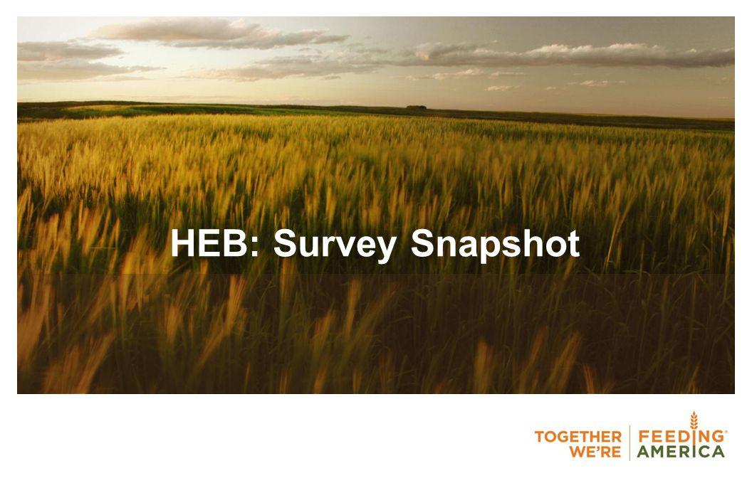 HEB: Survey Snapshot