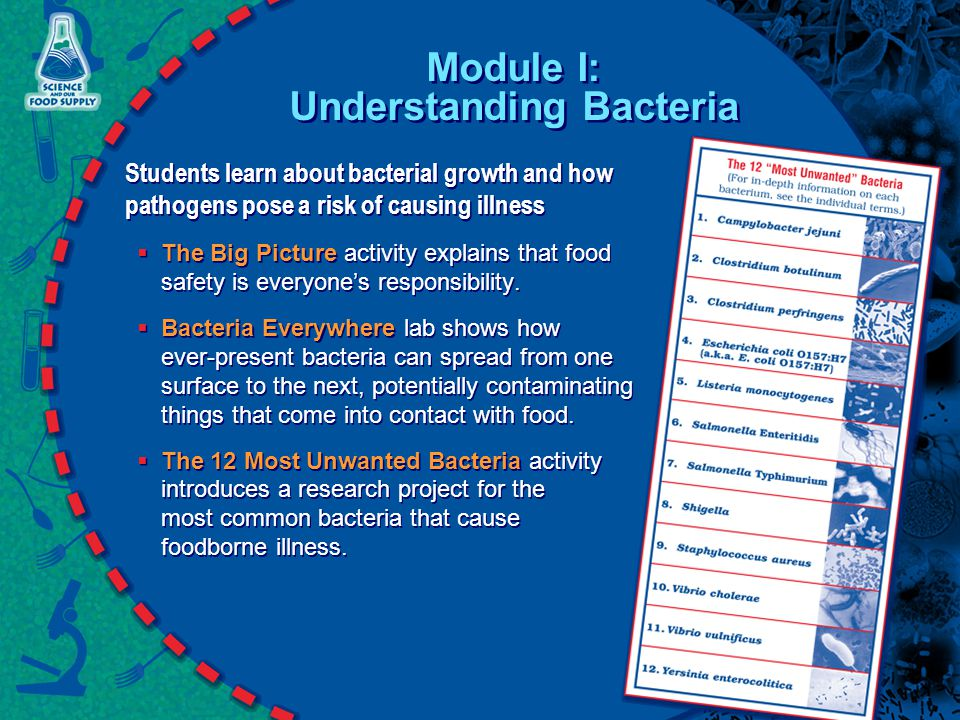 Module I: Understanding Bacteria Students learn about bacterial growth and how pathogens pose a risk of causing illness  The Big Picture activity explains that food safety is everyone's responsibility.