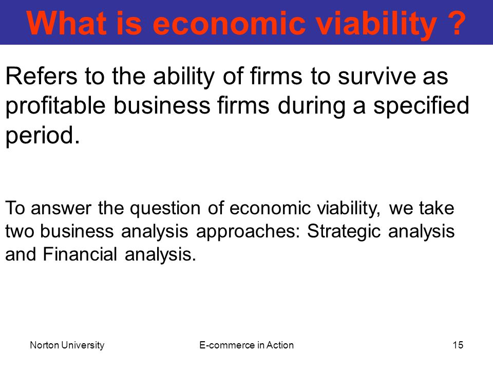 Norton UniversityE-commerce in Action15 What is economic viability .