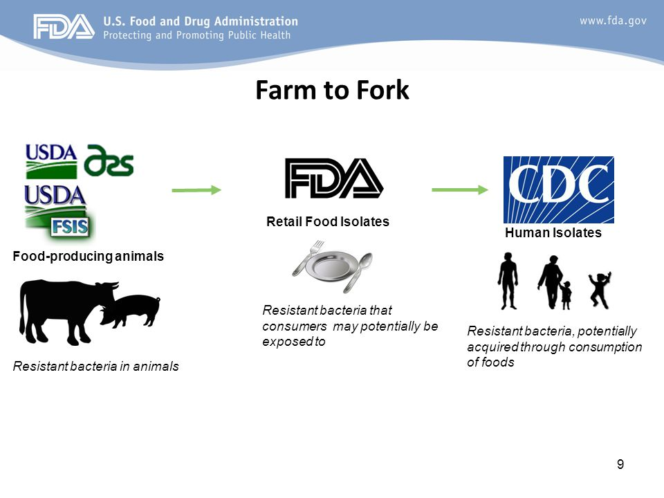 9 Farm to Fork Food-producing animals Human Isolates Retail Food Isolates Resistant bacteria in animals Resistant bacteria that consumers may potentially be exposed to Resistant bacteria, potentially acquired through consumption of foods