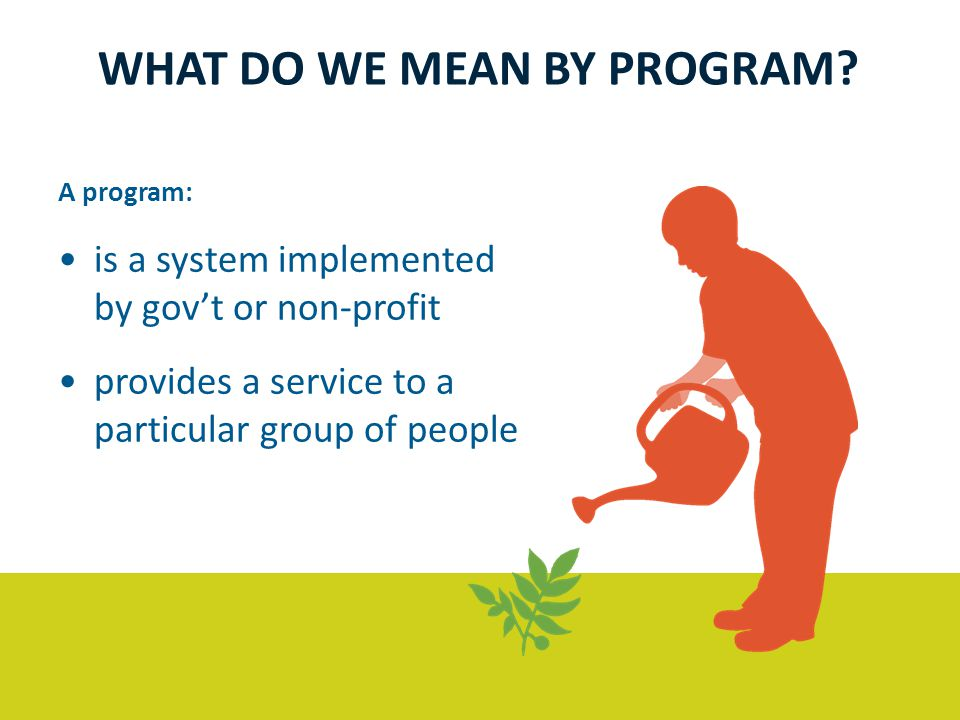 A program: is a system implemented by gov't or non-profit provides a service to a particular group of people WHAT DO WE MEAN BY PROGRAM?