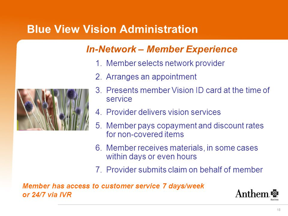 18 Blue View Vision Administration In-Network – Member Experience 1.Member selects network provider 2.Arranges an appointment 3.Presents member Vision
