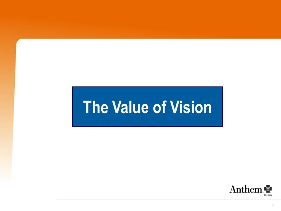 3 The Value of Vision