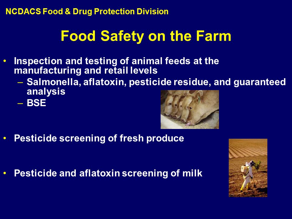 Food Safety on the Farm Inspection and testing of animal feeds at the manufacturing and retail levels –Salmonella, aflatoxin, pesticide residue, and guaranteed analysis –BSE Pesticide screening of fresh produce Pesticide and aflatoxin screening of milk NCDACS Food & Drug Protection Division