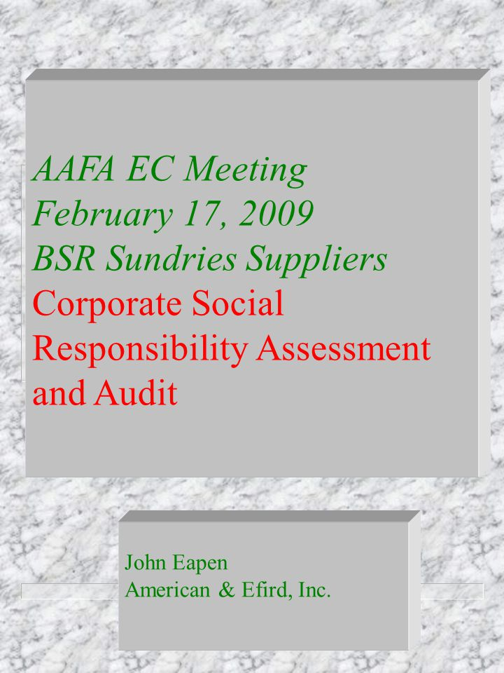 AAFA EC Meeting February 17, 2009 BSR Sundries Suppliers Corporate Social Responsibility Assessment and Audit John Eapen American & Efird, Inc.