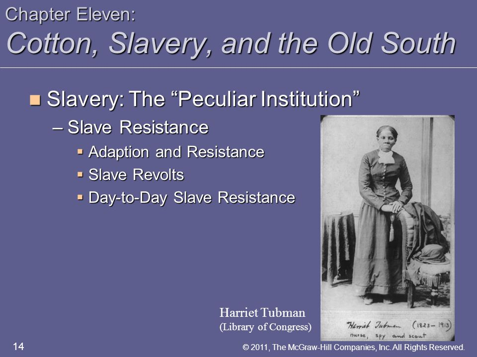 "Chapter Eleven: Cotton, Slavery, and the Old South Slavery: The ""Peculiar Institution"" Slavery: The ""Peculiar Institution"" –Slave Resistance  Adaptio"