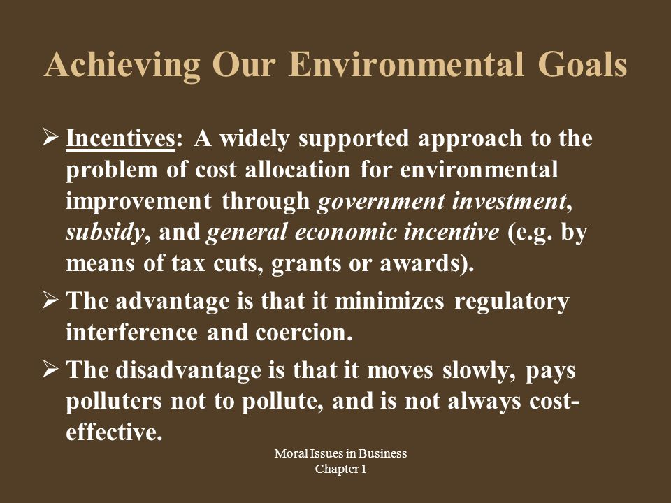 Achieving Our Environmental Goals  Incentives: A widely supported approach to the problem of cost allocation for environmental improvement through government investment, subsidy, and general economic incentive (e.g.
