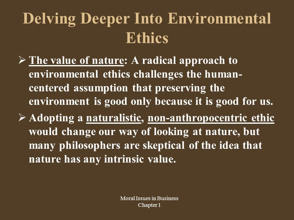Delving Deeper Into Environmental Ethics  The value of nature: A radical approach to environmental ethics challenges the human- centered assumption that preserving the environment is good only because it is good for us.