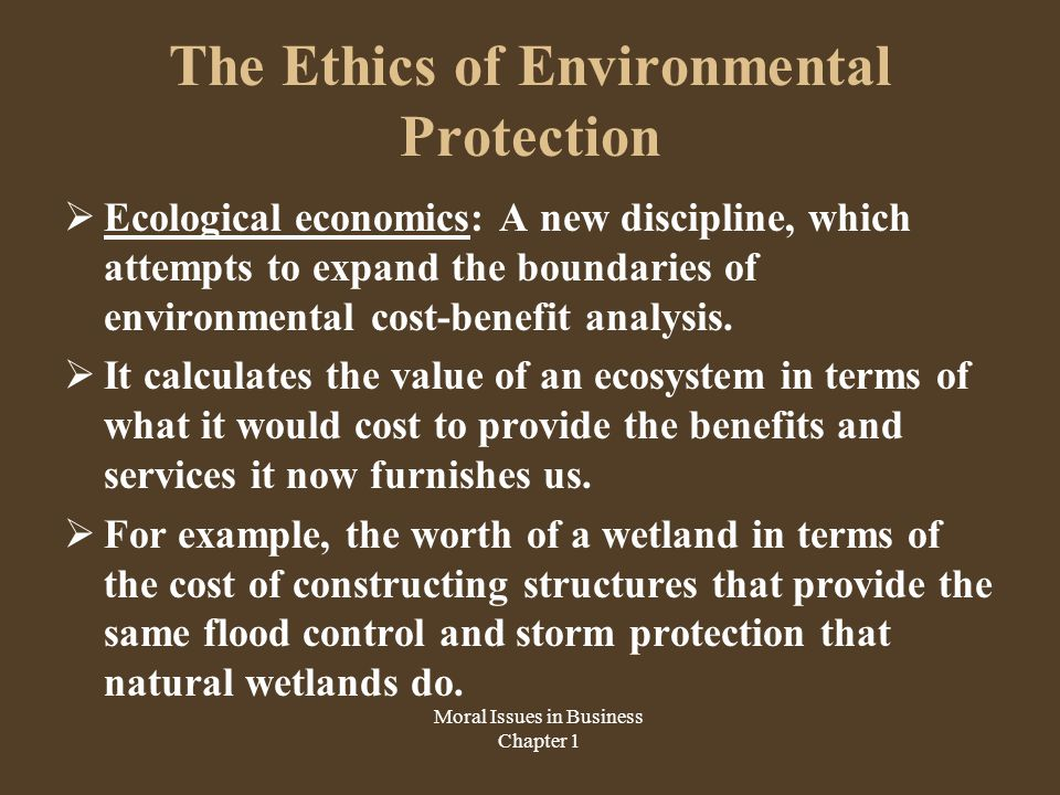 The Ethics of Environmental Protection  Who should pay the cost.