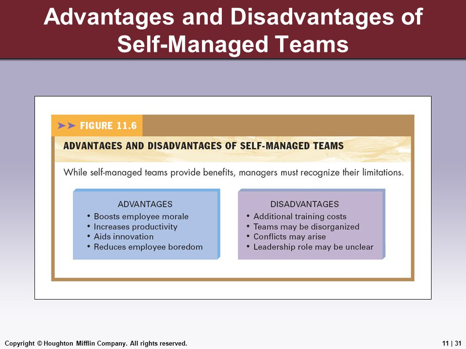 Copyright © Houghton Mifflin Company. All rights reserved.11 | 31 Advantages and Disadvantages of Self-Managed Teams Insert Figure 11.6, p.368