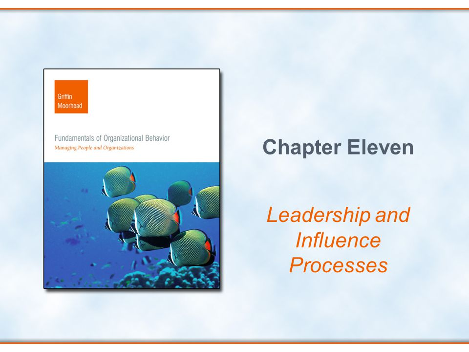 Chapter Eleven Leadership and Influence Processes