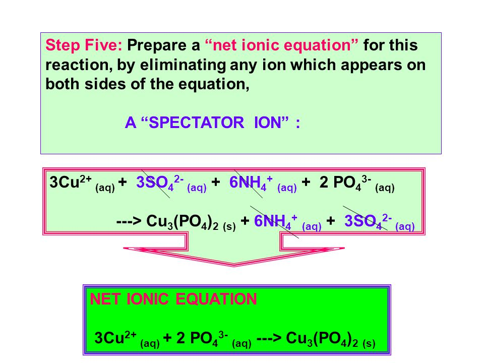 Step Five: Prepare a net ionic equation for this reaction, by eliminating any ion which appears on both sides of the equation, A SPECTATOR ION : 3Cu 2+ (aq) + 3SO 4 2- (aq) + 6NH 4 + (aq) + 2 PO 4 3- (aq) ---> Cu 3 (PO 4 ) 2 (s) + 6NH 4 + (aq) + 3SO 4 2- (aq) NET IONIC EQUATION 3Cu 2+ (aq) + 2 PO 4 3- (aq) ---> Cu 3 (PO 4 ) 2 (s)