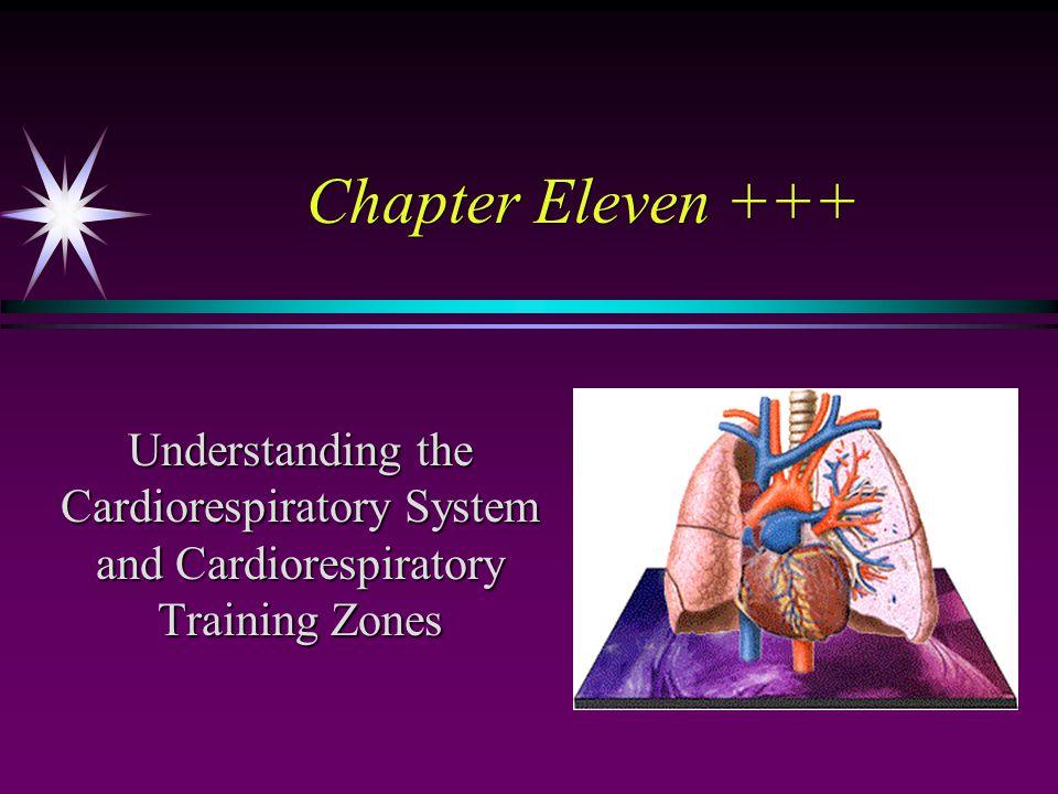 Chapter Eleven +++ Understanding the Cardiorespiratory System and Cardiorespiratory Training Zones