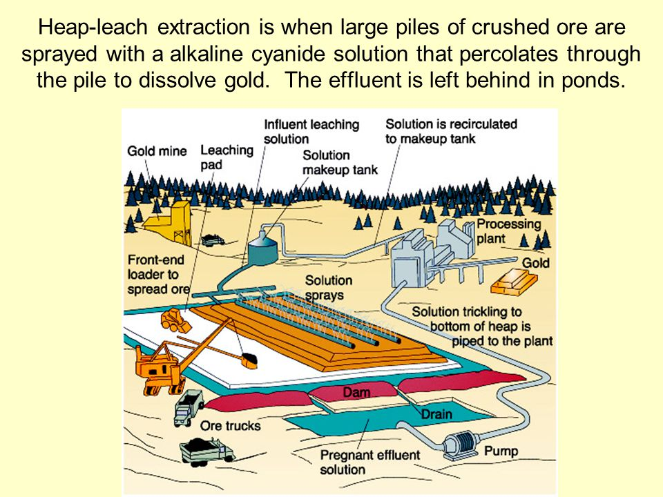 Heap-leach extraction is when large piles of crushed ore are sprayed with a alkaline cyanide solution that percolates through the pile to dissolve gold.