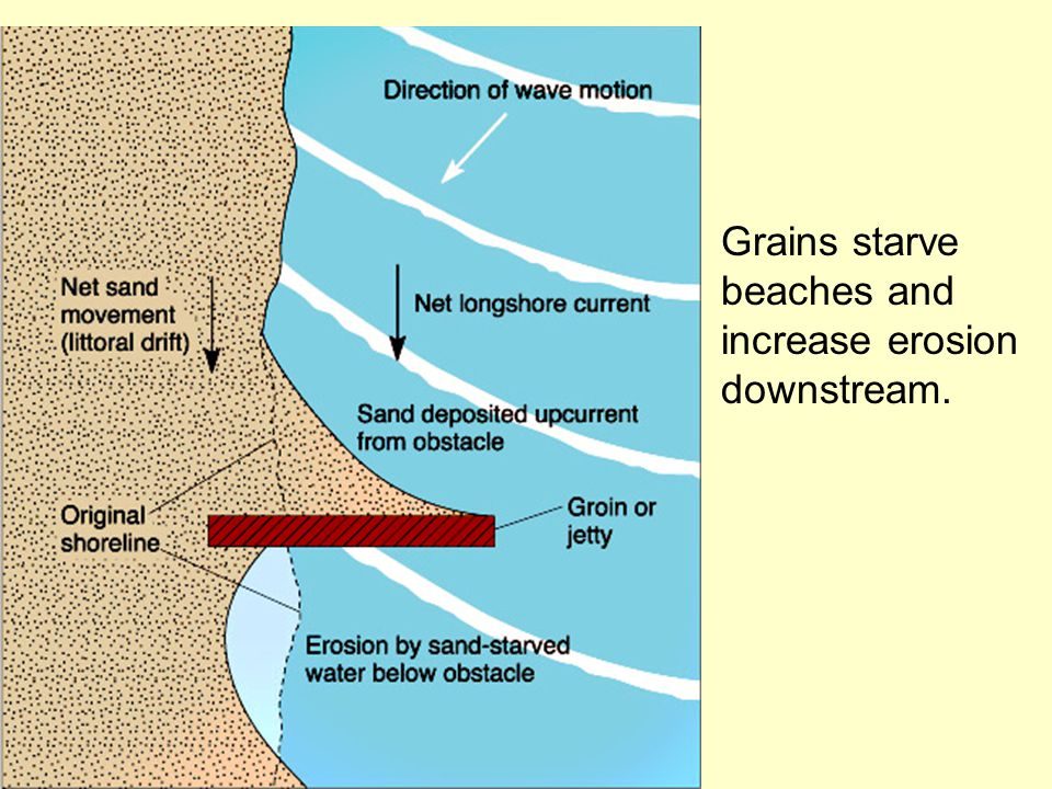 Grains starve beaches and increase erosion downstream.