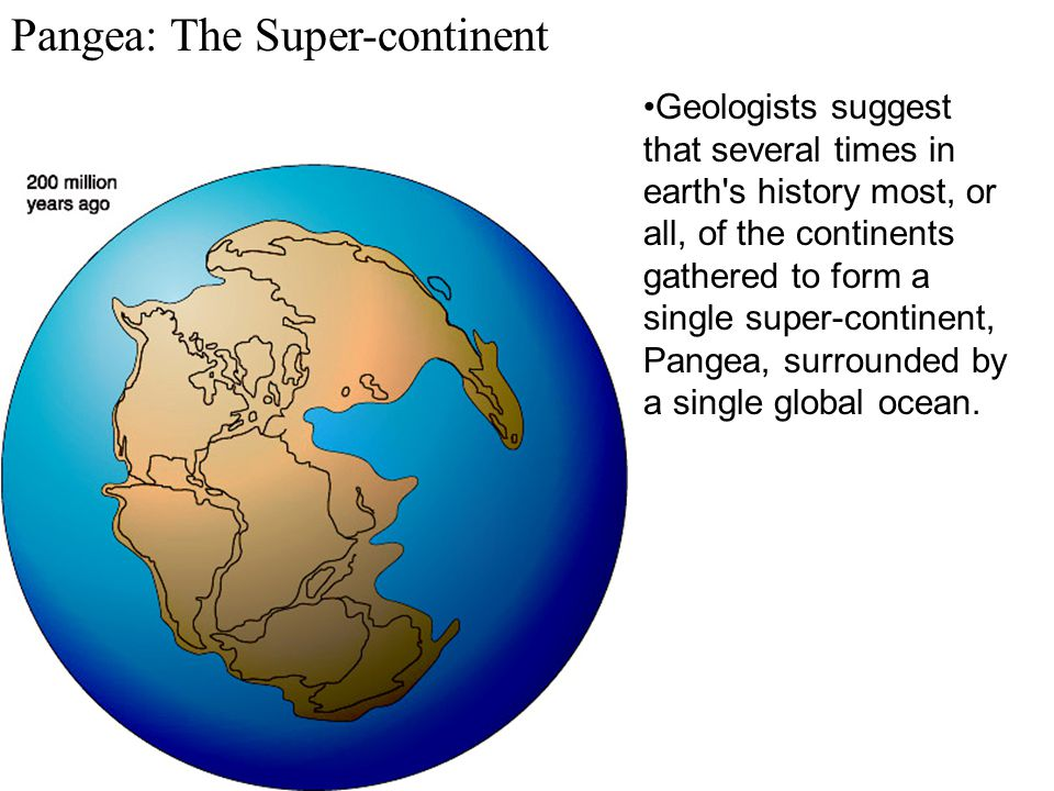 Pangea: The Super-continent Geologists suggest that several times in earth's history most, or all, of the continents gathered to form a single super-c