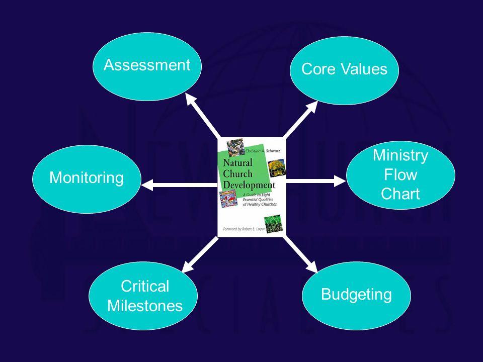 AssessmentCore ValuesBudgetingMonitoring Ministry Flow Chart Critical Milestones