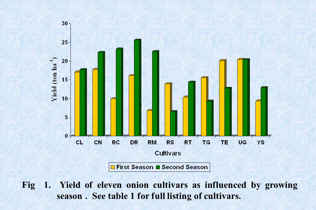 Fig 1. Yield of eleven onion cultivars as influenced by growing season. See table 1 for full listing of cultivars.