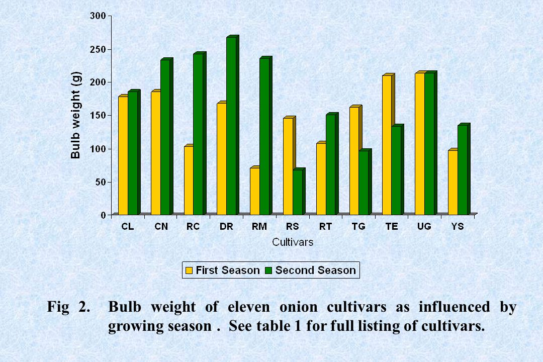 Fig 2. Bulb weight of eleven onion cultivars as influenced by growing season. See table 1 for full listing of cultivars.