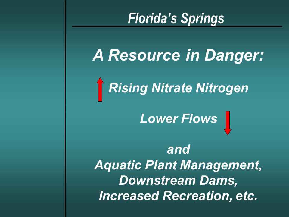 Synthesis of Recent Studies (cont.) Flora and Fauna –Benthic and attached algae populations are increasing, especially in the vicinity of spring boils –Macroinvertebrate productivity may be reduced –Fish populations have declined in the Silver River, possibly due in part to decreased NPP and other causes (Rodman Dam?) Florida Springs: Ecosystem Studies