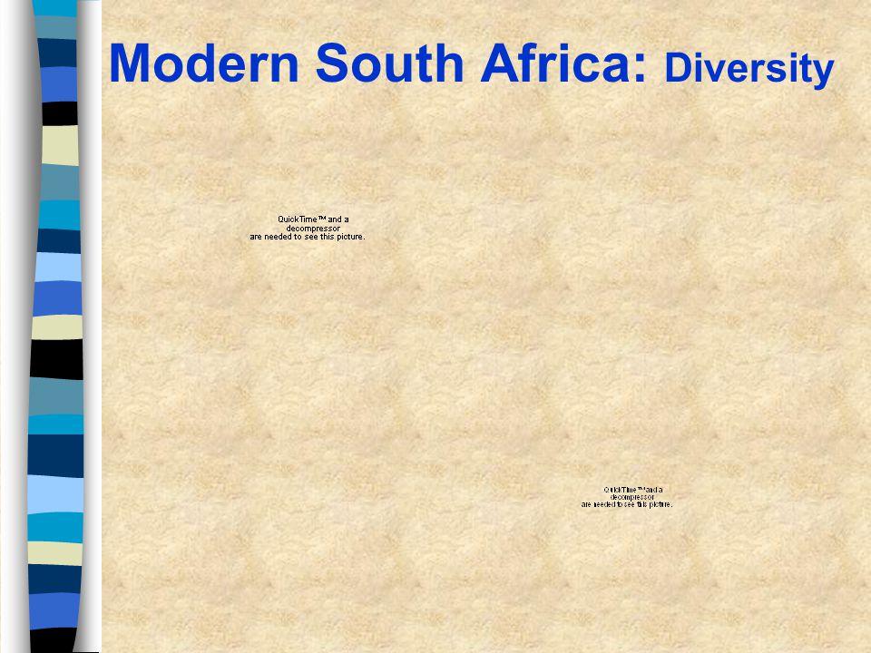 Modern South Africa: Diversity