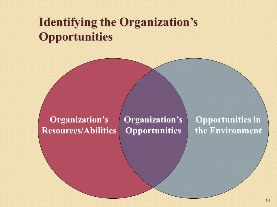 Identifying the Organization's Opportunities Organization's Opportunities Organization's Resources/Abilities Opportunities in the Environment 13