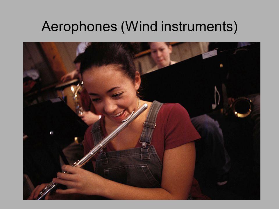 Aerophones (Wind instruments)