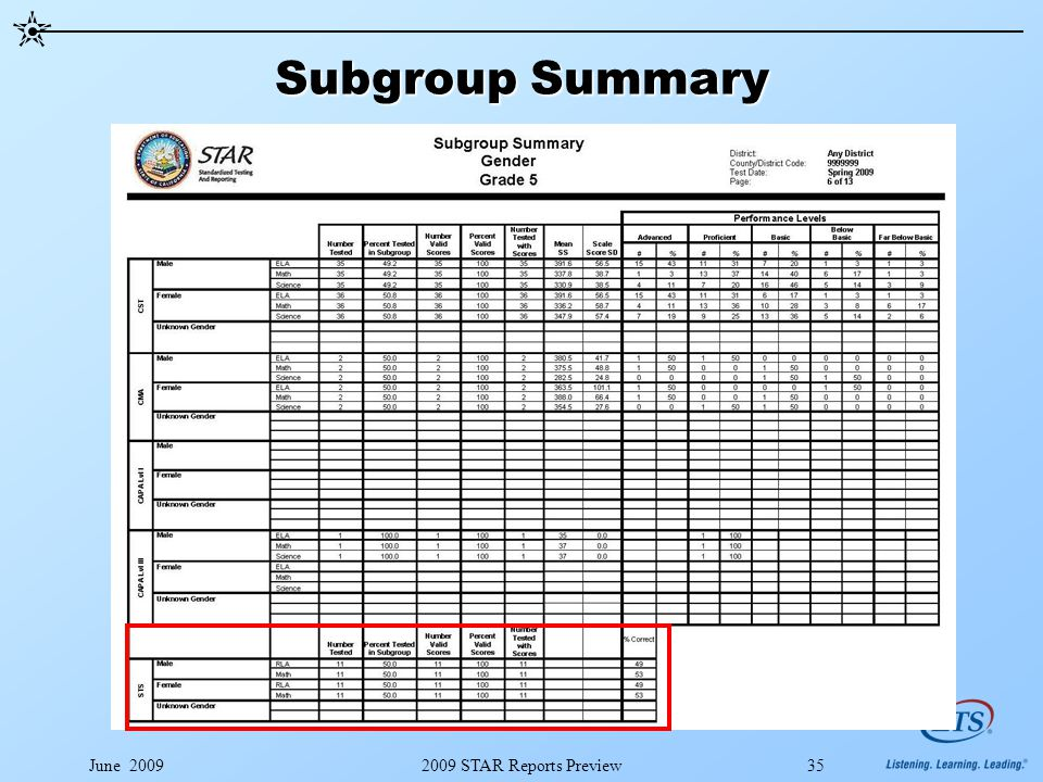 June 20092009 STAR Reports Preview35 Subgroup Summary