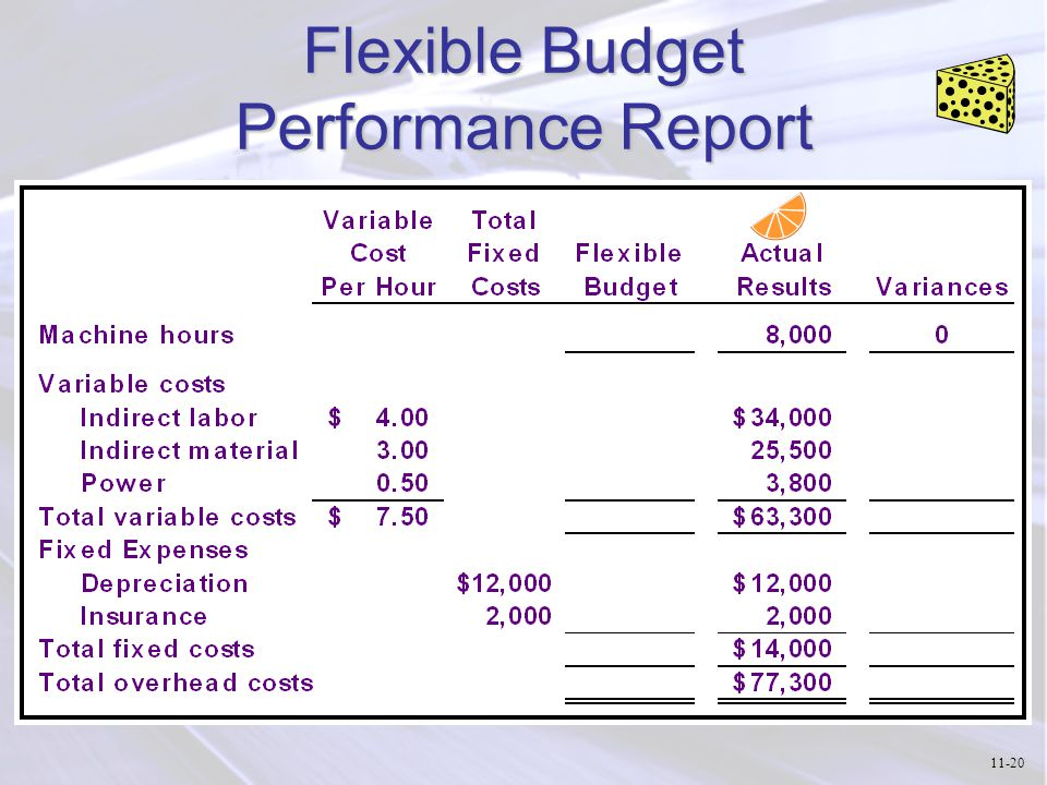 Flexible Budget Performance Report 11-20