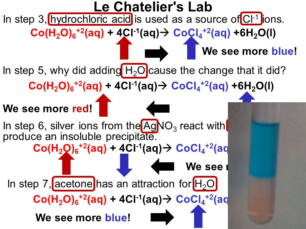 Le Chatelier s Lab Co(H 2 O) 6 +2 (aq) + 4Cl -1 (aq)  CoCl 4 +2 (aq) +6H 2 O(l) In step 3, hydrochloric acid is used as a source of Cl -1 ions.