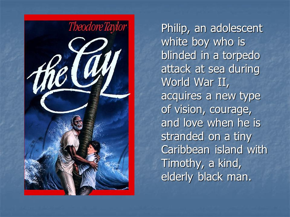 Philip, an adolescent white boy who is blinded in a torpedo attack at sea during World War II, acquires a new type of vision, courage, and love when he is stranded on a tiny Caribbean island with Timothy, a kind, elderly black man.