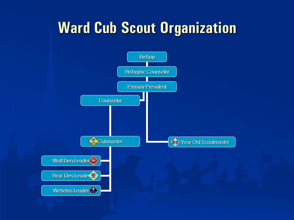 Ward Cub Scout Organization