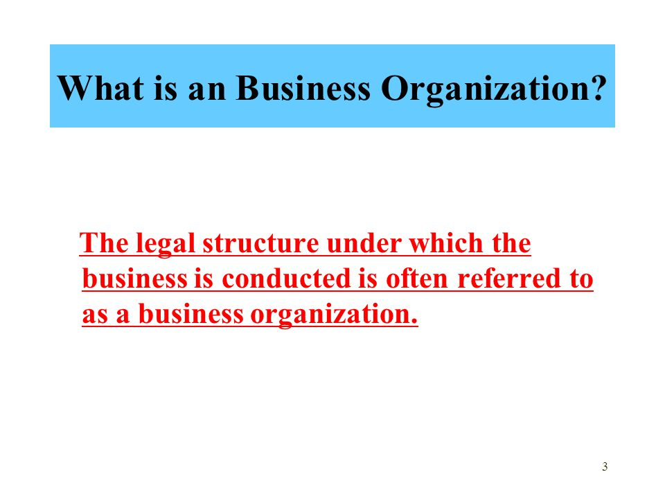 3 What is an Business Organization.