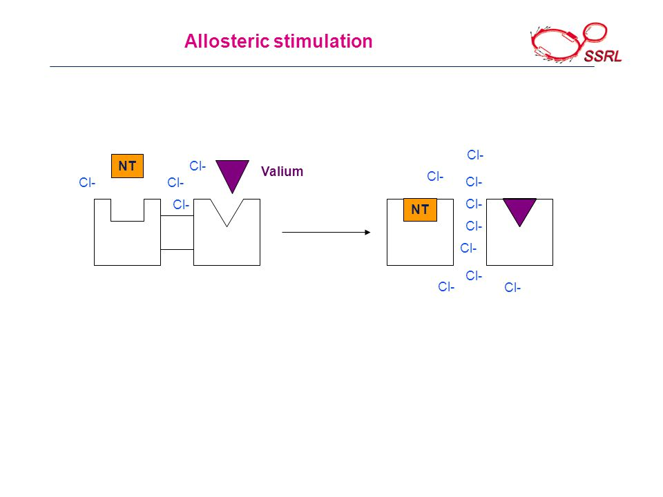 Allosteric stimulation NT Valium Cl- NT Cl-