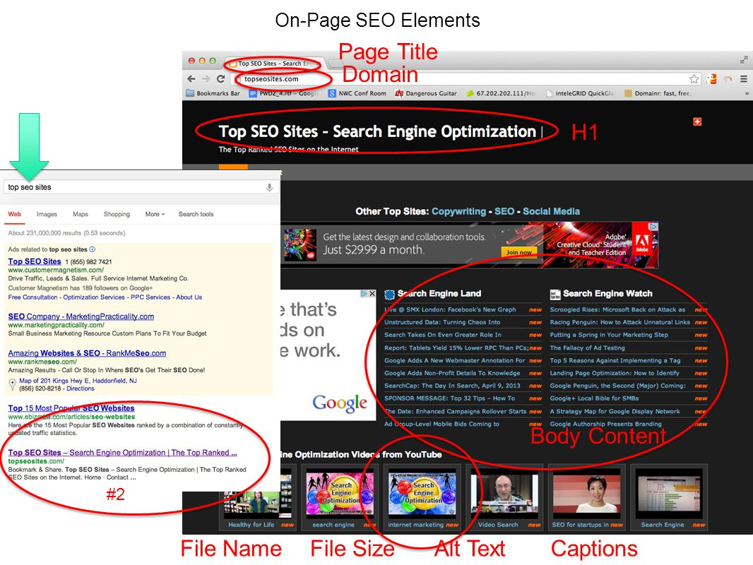 On-Page SEO Elements 17 #2 Page Title Domain H1 Body Content Alt TextFile SizeFile NameCaptions
