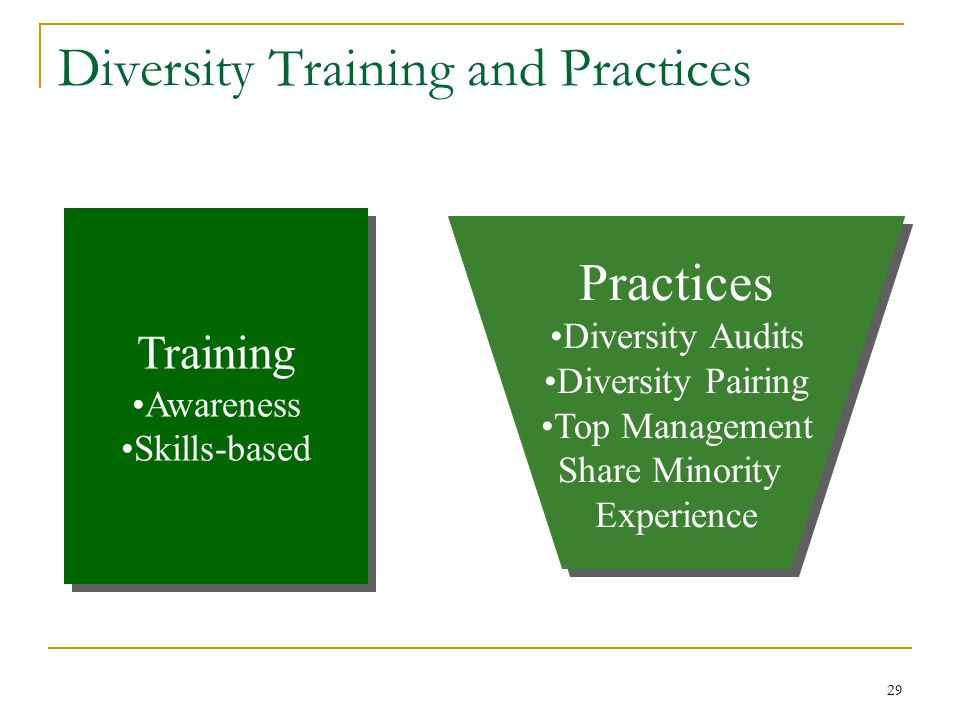 29 Diversity Training and Practices Training Awareness Skills-based Training Awareness Skills-based Practices Diversity Audits Diversity Pairing Top Management Share Minority Experience Practices Diversity Audits Diversity Pairing Top Management Share Minority Experience