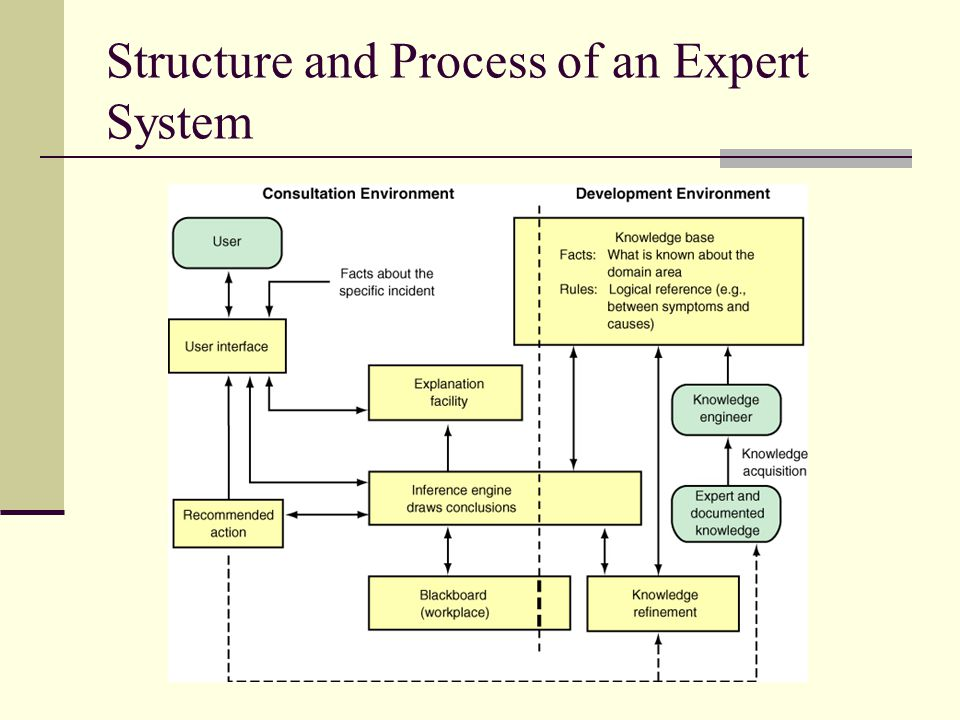 Structure and Process of an Expert System