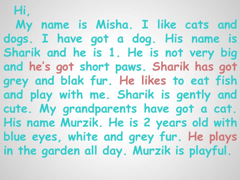 Hi, My name is Misha. I like cats and dogs. I have got a dog.