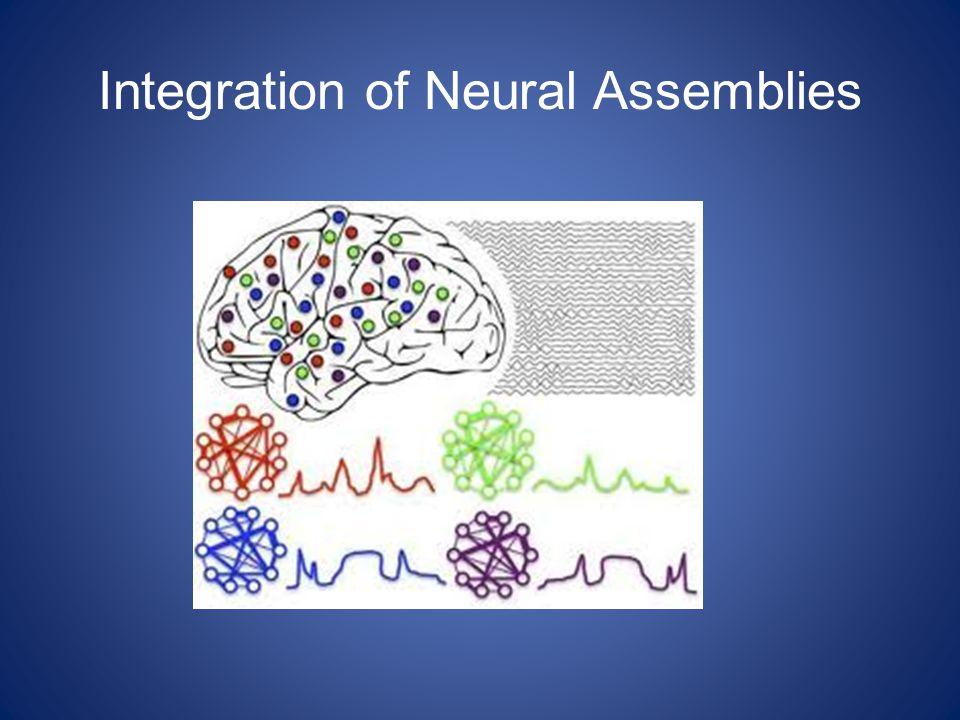 Integration of Neural Assemblies
