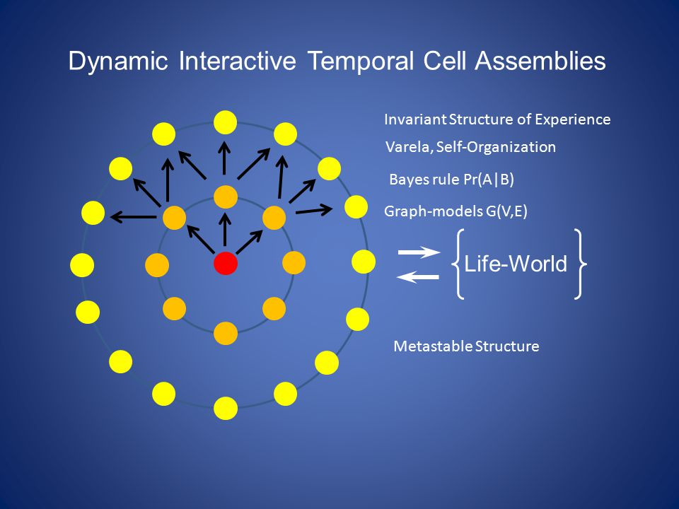Life-World Dynamic Interactive Temporal Cell Assemblies Invariant Structure of Experience Bayes rule Pr(A|B) Varela, Self-Organization Metastable Structure Graph-models G(V,E)